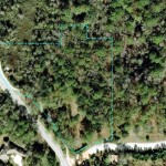 Lot 3 in the Found Forest enclave features a completely isolated backyard