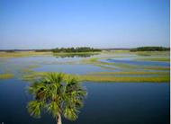 Matanzas Estuary DEP Study